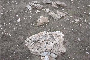 اسکن از قبر گبری خردسال شامل فلز کوچک